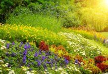 Coiffures autres que chignon pour un mariage - Manhattan beach botanical garden ...